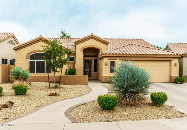 1425 W Park Avenue, Gilbert, AZ 85233 (MLS #5796860) :: Kelly Cook Real Estate Group