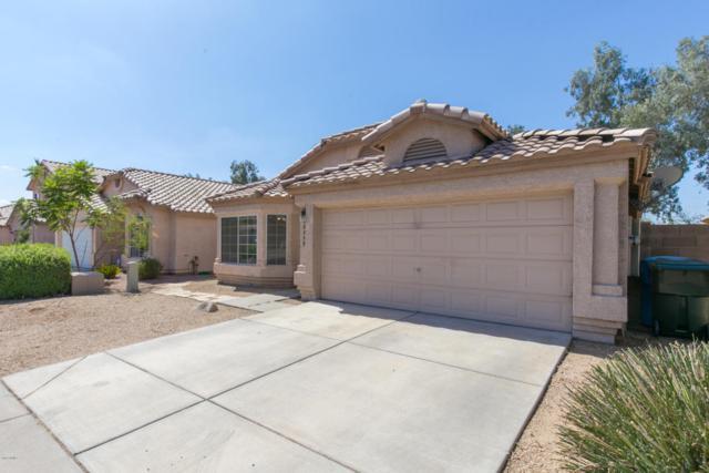 2239 E Morrow Drive, Phoenix, AZ 85024 (MLS #5796861) :: Kelly Cook Real Estate Group