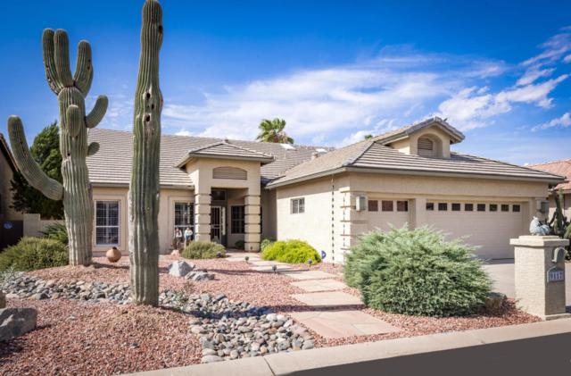 9117 E Crystal Drive, Sun Lakes, AZ 85248 (MLS #5796862) :: My Home Group