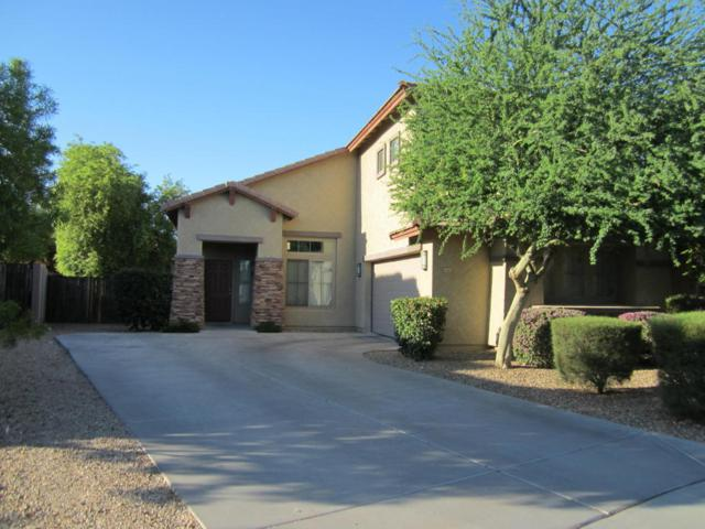 15361 W Cottonwood Circle, Surprise, AZ 85374 (MLS #5796878) :: The Sweet Group