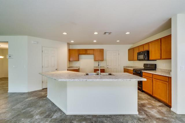11911 W Honeysuckle Court, Peoria, AZ 85383 (MLS #5796884) :: Kelly Cook Real Estate Group