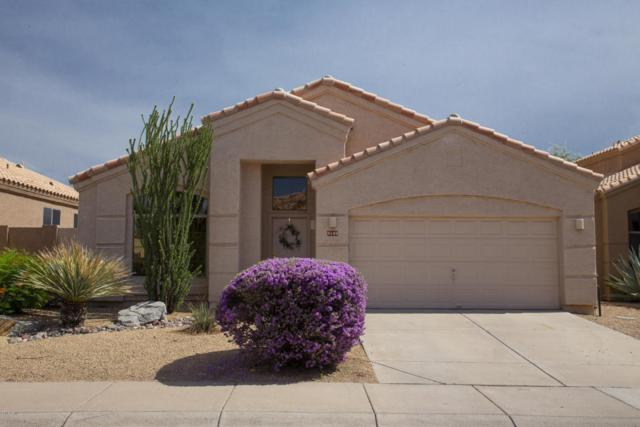 9149 E Nittany Drive, Scottsdale, AZ 85255 (MLS #5796886) :: Team Wilson Real Estate