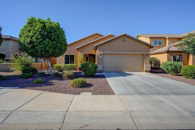 10925 E Shepperd Avenue, Mesa, AZ 85212 (MLS #5796889) :: Team Wilson Real Estate