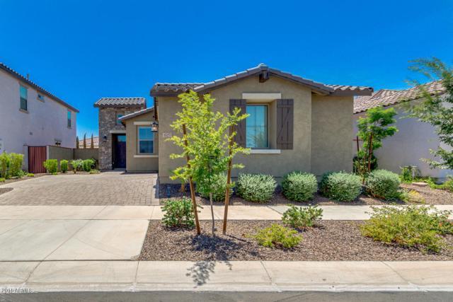 10257 E Theorem Drive, Mesa, AZ 85212 (MLS #5796898) :: Team Wilson Real Estate