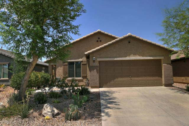 7984 W Sonoma Way, Florence, AZ 85132 (MLS #5796905) :: Keller Williams Realty Phoenix