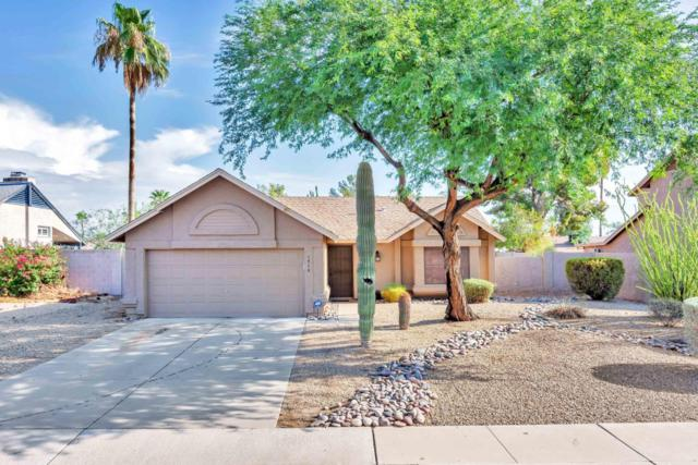 1714 E Paradise Lane, Phoenix, AZ 85022 (MLS #5796907) :: Team Wilson Real Estate