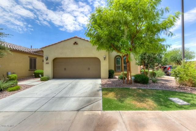 3522 S Washington Street, Chandler, AZ 85286 (MLS #5796913) :: Team Wilson Real Estate