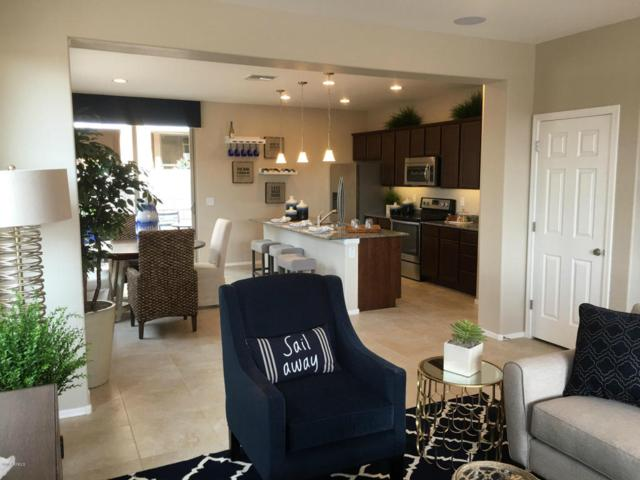 5724 E Butte Street, Mesa, AZ 85205 (MLS #5796919) :: Kelly Cook Real Estate Group