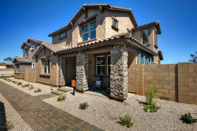 242 N 56TH Place, Mesa, AZ 85205 (MLS #5796922) :: Kelly Cook Real Estate Group