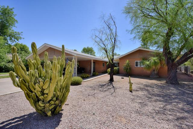 1717 W Flower Street, Phoenix, AZ 85015 (MLS #5796924) :: CANAM Realty Group