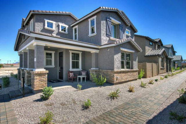 216 N 56TH Place, Mesa, AZ 85205 (MLS #5796932) :: Arizona Best Real Estate