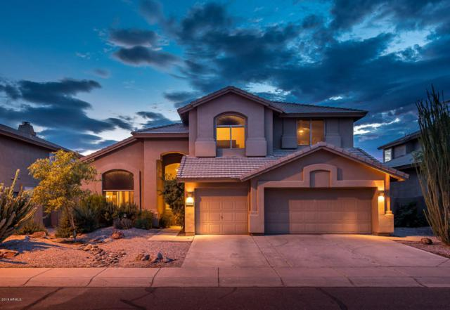 25816 N 44TH Way, Phoenix, AZ 85050 (MLS #5796933) :: CANAM Realty Group