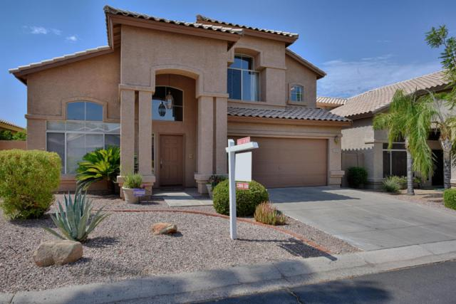 1309 E Sheena Drive, Phoenix, AZ 85022 (MLS #5796939) :: Keller Williams Realty Phoenix