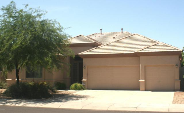 14453 W Wilshire Drive, Goodyear, AZ 85395 (MLS #5796956) :: Keller Williams Realty Phoenix