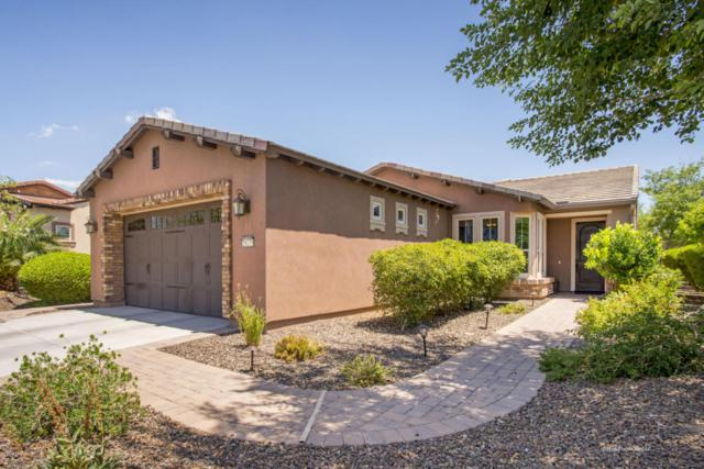 29275 N 128TH Lane, Peoria, AZ 85383 (MLS #5796964) :: Keller Williams Realty Phoenix