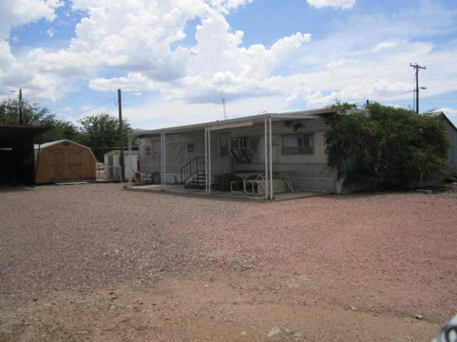 185 E Spur Trail, Roosevelt, AZ 85545 (MLS #5796971) :: The Daniel Montez Real Estate Group