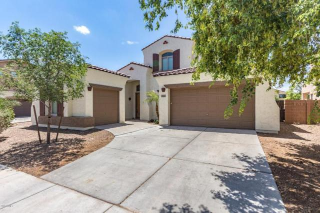 645 E Indian Wells Place, Chandler, AZ 85249 (MLS #5797019) :: Occasio Realty