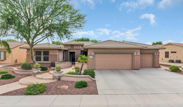 16427 W Salado Creek Drive, Surprise, AZ 85387 (MLS #5797025) :: The W Group