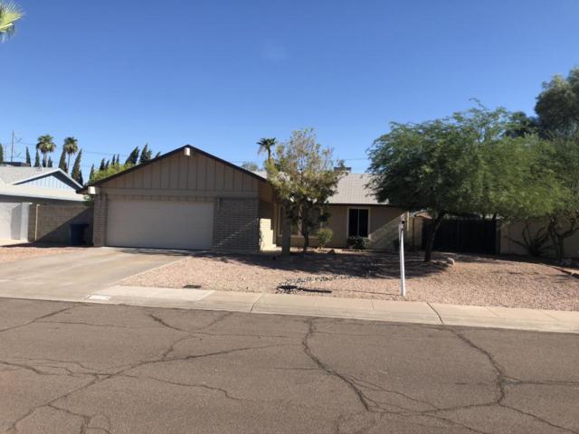 605 E Bendix Drive, Tempe, AZ 85283 (MLS #5797052) :: Occasio Realty