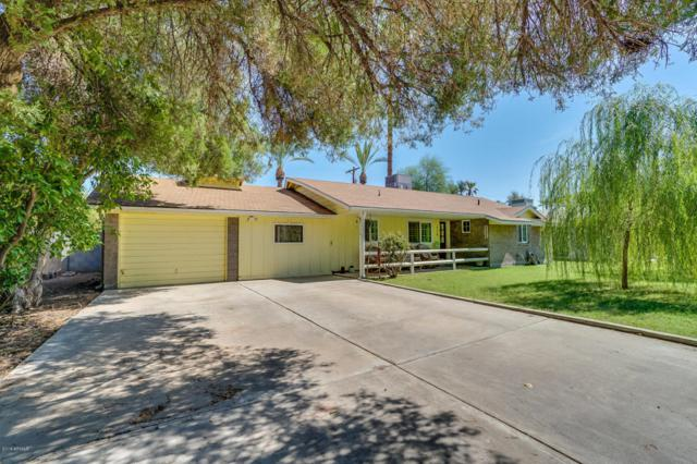 114 W Hu Esta Drive, Tempe, AZ 85282 (MLS #5797057) :: Occasio Realty