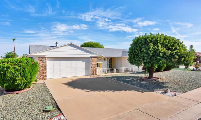 9602 W Timberline Drive, Sun City, AZ 85351 (MLS #5797070) :: Occasio Realty
