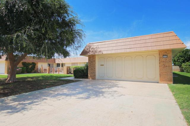 11115 W Cameo Drive, Sun City, AZ 85351 (MLS #5797078) :: Occasio Realty
