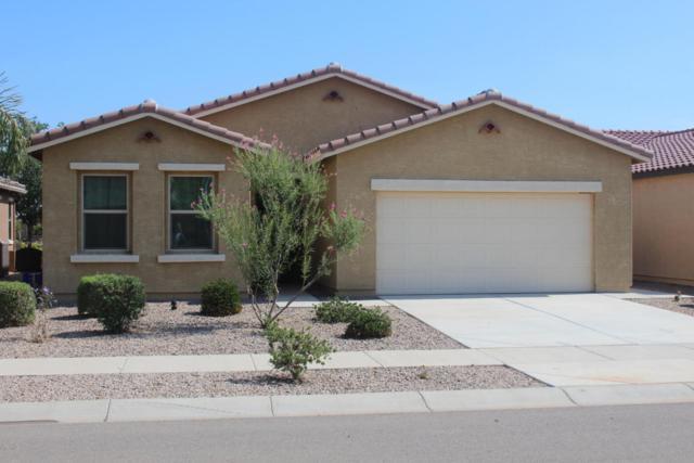 2622 E San Mateo Drive, Casa Grande, AZ 85194 (MLS #5797103) :: Yost Realty Group at RE/MAX Casa Grande
