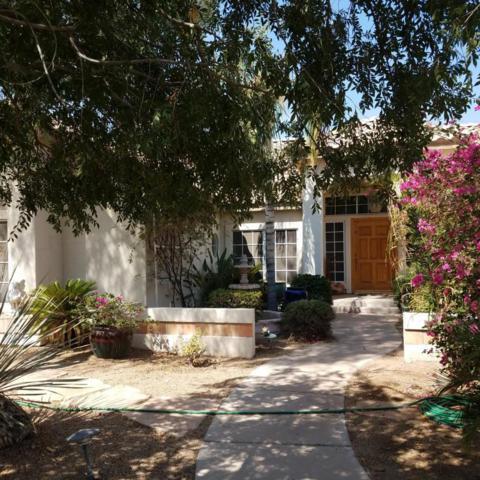 2573 E Desert Willow Drive, Phoenix, AZ 85048 (MLS #5797153) :: The Garcia Group @ My Home Group