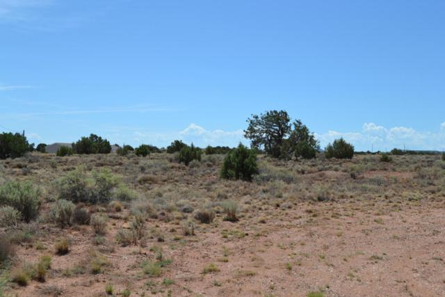 9621 E Concho Highway, Snowflake, AZ 85937 (MLS #5797307) :: Yost Realty Group at RE/MAX Casa Grande