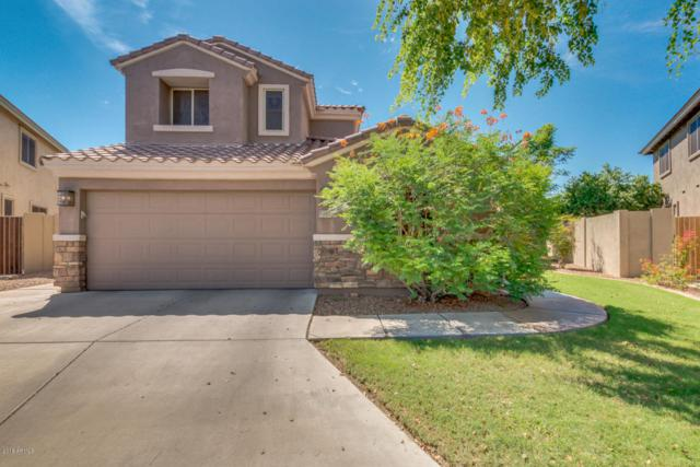 851 E Krista Way, Tempe, AZ 85284 (MLS #5797339) :: Occasio Realty