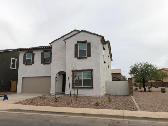37125 W Meta Way, Maricopa, AZ 85138 (MLS #5797551) :: Yost Realty Group at RE/MAX Casa Grande