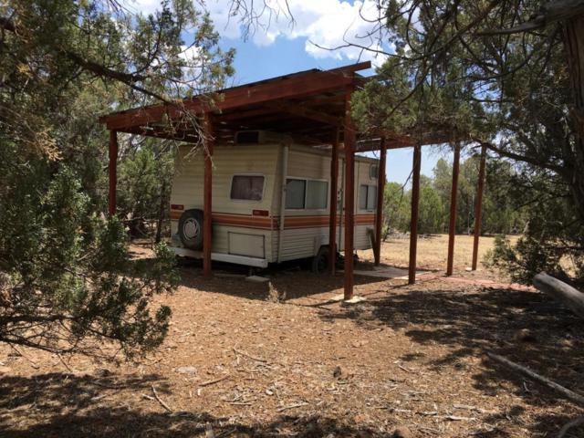 5319 N Kit Fox Trail, Kingman, AZ 86401 (MLS #5797633) :: Yost Realty Group at RE/MAX Casa Grande