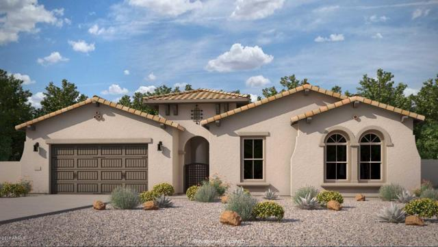 1332 N 102ND Street, Mesa, AZ 85207 (MLS #5797684) :: Occasio Realty
