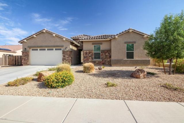 18609 W Denton Avenue, Litchfield Park, AZ 85340 (MLS #5797940) :: Occasio Realty