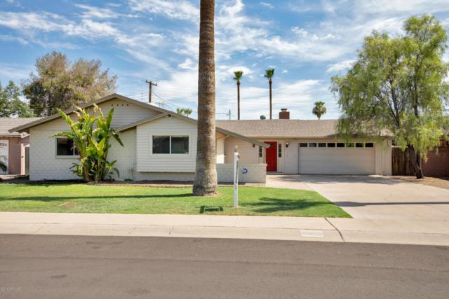 8319 E Heatherbrae Avenue, Scottsdale, AZ 85251 (MLS #5797946) :: Yost Realty Group at RE/MAX Casa Grande