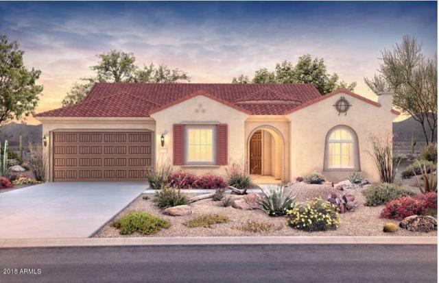 27546 W Tonopah Drive, Buckeye, AZ 85396 (MLS #5797958) :: Santizo Realty Group