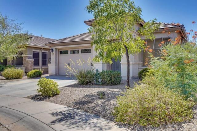 2814 N White Sands Lane, Casa Grande, AZ 85122 (MLS #5798026) :: Yost Realty Group at RE/MAX Casa Grande
