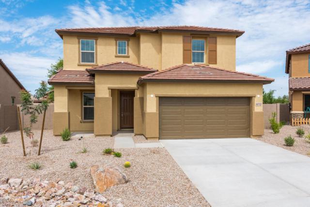 41712 N Cielito Linda Way, San Tan Valley, AZ 85140 (MLS #5798061) :: Scott Gaertner Group