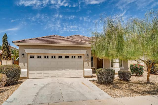 378 S 166TH Avenue, Goodyear, AZ 85338 (MLS #5798318) :: The Wehner Group