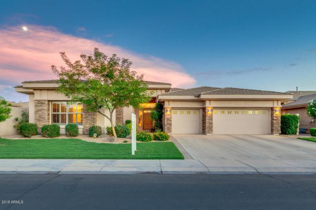 1727 W Yosemite Place, Chandler, AZ 85248 (MLS #5798448) :: Arizona 1 Real Estate Team