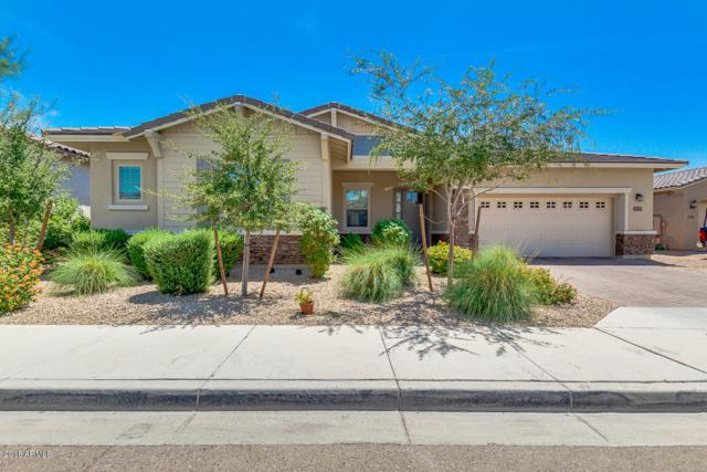 14565 W Medlock Drive, Litchfield Park, AZ 85340 (MLS #5798566) :: Lifestyle Partners Team