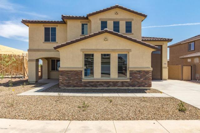 7911 W Atlantis Way, Phoenix, AZ 85043 (MLS #5798573) :: Occasio Realty