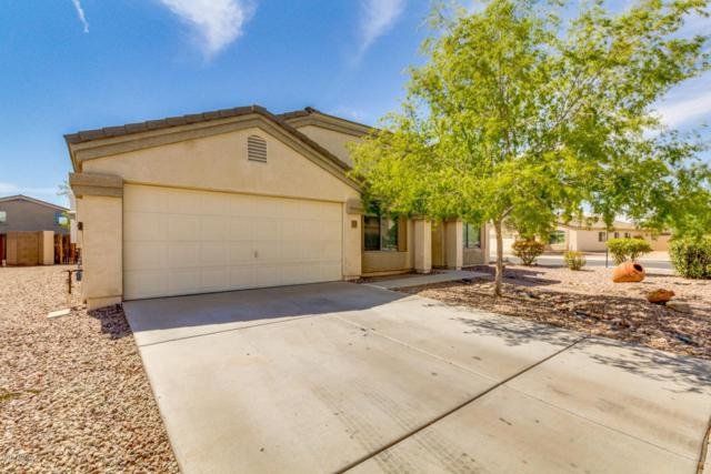 2019 N Ensenada Lane, Casa Grande, AZ 85122 (MLS #5798756) :: Yost Realty Group at RE/MAX Casa Grande