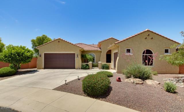 20002 N 272ND Drive, Buckeye, AZ 85396 (MLS #5798831) :: The Jesse Herfel Real Estate Group