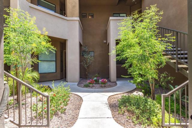 7027 N Scottsdale Road #218, Paradise Valley, AZ 85253 (MLS #5798849) :: Team Wilson Real Estate