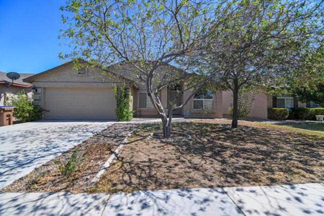 4891 E Shapinsay Drive, San Tan Valley, AZ 85140 (MLS #5798880) :: Yost Realty Group at RE/MAX Casa Grande