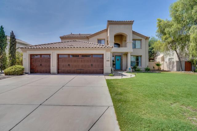 2851 E Brooks Court, Gilbert, AZ 85296 (MLS #5799388) :: Kepple Real Estate Group