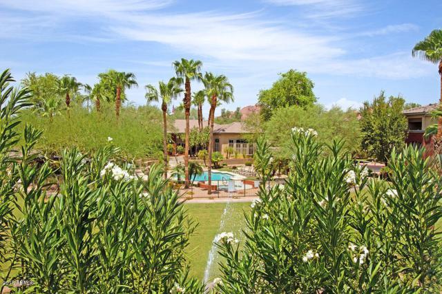 5401 E Van Buren Street #3017, Phoenix, AZ 85008 (MLS #5799459) :: My Home Group