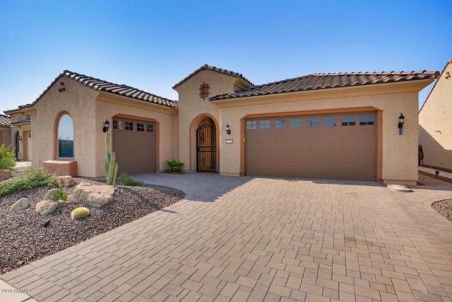 27541 W Tonopah Drive, Buckeye, AZ 85396 (MLS #5799562) :: Santizo Realty Group