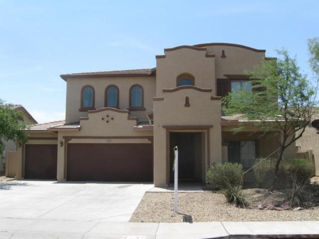 5129 W Fawn Drive, Laveen, AZ 85339 (MLS #5799578) :: Sibbach Team - Realty One Group